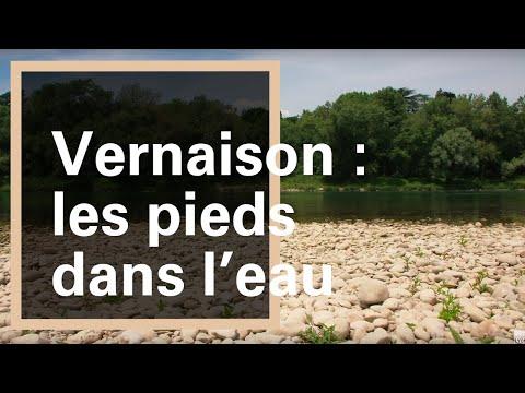 Sentier de l'homme et du fleuve : balade au bord du Rhône