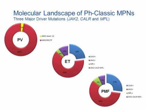 Myeloproliferative Neoplasm [Hot Topic]