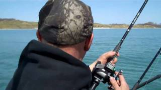 Brown Trout Fishing - Sheboygan Wisconsin off Whistling Straits Golf Course