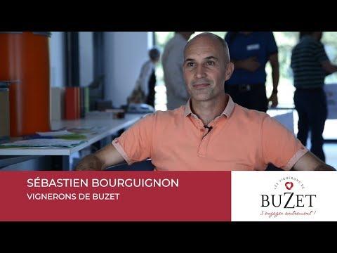 Sébastien BOURGUIGNON - Les Vignerons de Buzet