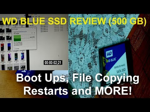 WD Blue SSD Review! - Program Opening, Boot, File Copying TESTS!!