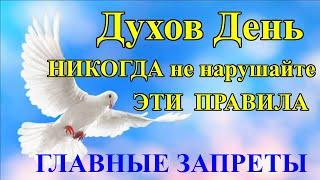 Народные традиции и приметы и что нельзя делать в праздник День Святого Духа. 21 июня Духов День.