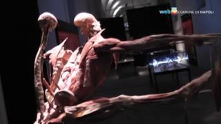 I corpi di von Hagens al Real Albergo dei Poveri