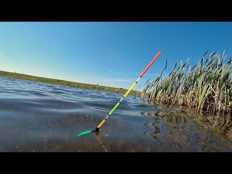 Рыбалка на утренней зорьке на поплавок. Ловля Карася.