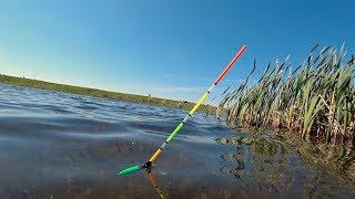 Рыбалка на утренней зорьке на поплавок Ловля Карася