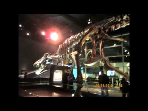 The Royal Tyrrell Museum in Drumheller and nearby Dinosaur Provincial Park in Canada