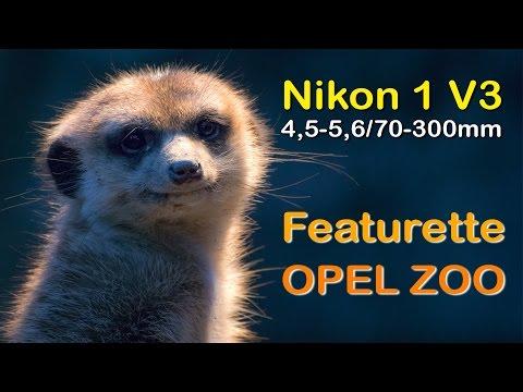 Nikon 1 V3 & Nikkor AF-S VR 70-300mm - Featurette #2 - OPEL ZOO Kronberg - Full HD 1080p