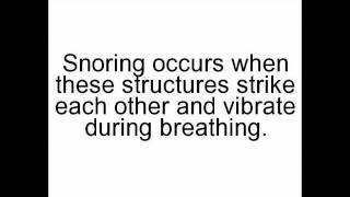 Best Anti Snoring Spray