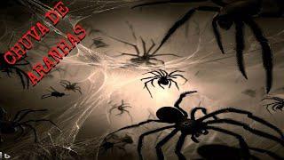 Misteriosa chuva de Aranhas em Minas Gerais!!!