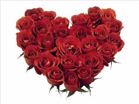 I Love You by Ippu Do