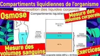 Les Compartiments Liquidiennes de L'organisme [[ Physiologie rénale ]]