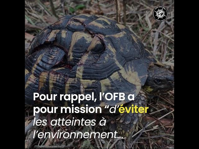 Global Earth Keeper porte plainte !
