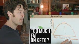 Too Much Fat On Keto (aka Metabolic Traffic)