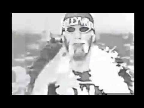 Hulk Hogan Entrance at WM X8 - YouTube