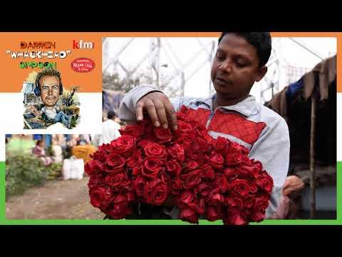 Whackhead Simpson - Indian Florist Karaoke