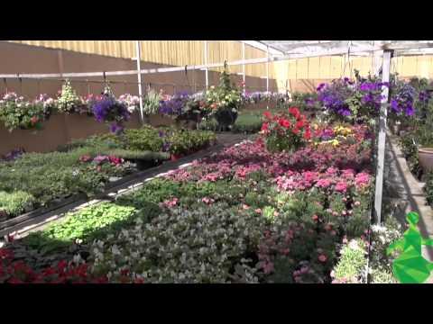 HD - Garden Center