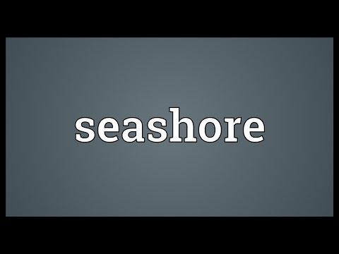 Seashore Meaning