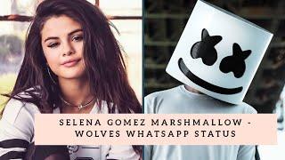 Selena gomez, marshmallow - wolves ...