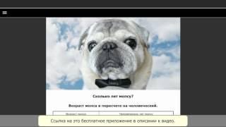 """Приложение для android """"Мопс - выбор собаки"""""""
