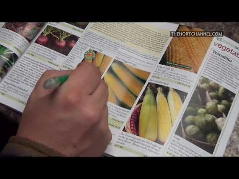 Sean decides what seeds to grow and why in 2015 | RAW FOOTAGE