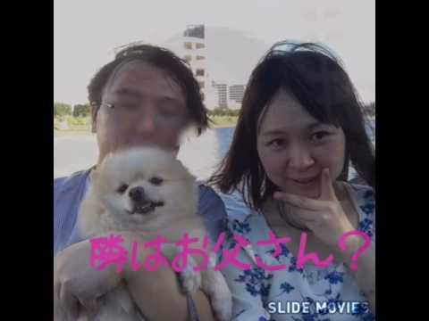 元ジュニアアイドル小川満鈴の旦那の正体 - YouTube