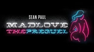 Sean Paul - No Lie Ft. Dua Lipa [Official Audio]