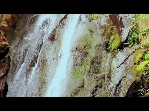 Elisabeta Marku - Djalin sot po e marton (Official Video)
