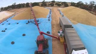 Grain Guzzler - Drive Over Pit