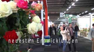 Die Floraholland Trade Fair Aalsmeer 2014, von 05 - 07 November!