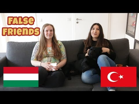 False Friends - Turkish and Hungarian Words