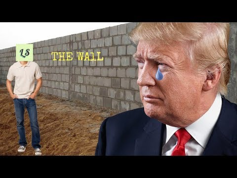 Donald Trump reacts to my Do you want to build a wall video!