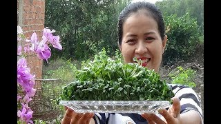 Yummy Cooking Beef With Vegetable Sprouts Recipe - Good Food | Cooking With Me
