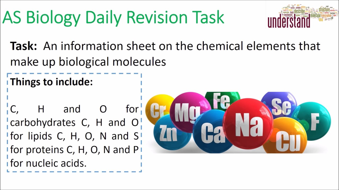 AS Biology Daily Revision Task 11:  Biological Ions - YouTube