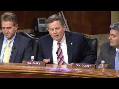 Daines Question + Answer Zinke Hearing