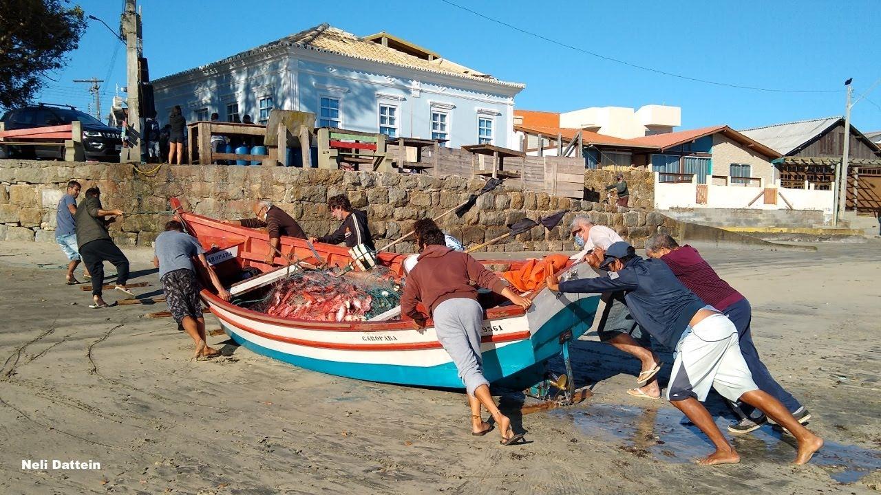 Garopaba/SC,  04/08/20, Pescaria com muitos peixes, além das histórias e bom humor dos pescadores.