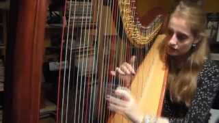 Cinderella (Cendrillon) / A Dream Is A Wish Your Heart Makes (Tendre Rêve) - Harp Cover