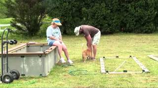 Making Raised Flower Beds
