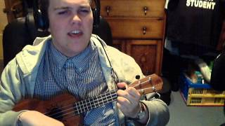 I'll never find another you - Ukulele Cover
