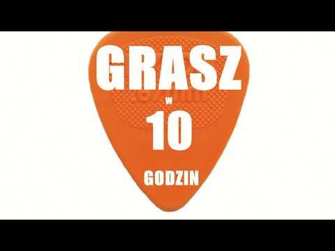 lekcjegitara.pl - pomysł na biznes
