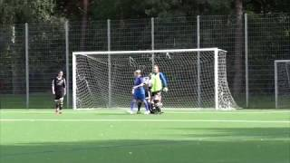 FC Bergedorf 85 vs SC Victoria