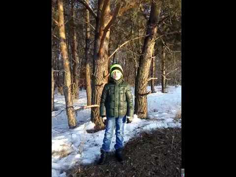 Изображение предпросмотра прочтения – ЕгорГулько читает произведение «Весна (Зима не даром злится…)» Ф.И.Тютчева