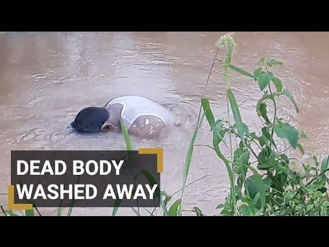Unknown dead body found in flood water at keesara RR Dist.