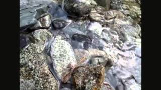 Вода. Слияние со стихией