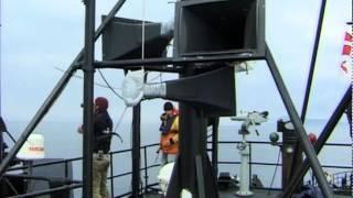 Bekenntnisse eines Öko-Terroristen (englischer Trailer) von Peter Brown