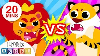 Lions vs. Tigers | Baby Animal Songs for Children | Kids Songs and Nursery Rhymes by Little Angel Video