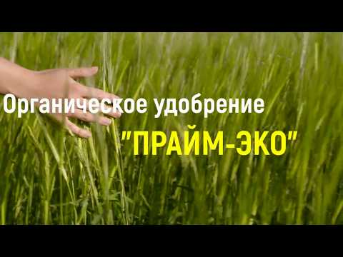 """""""Прайм-Эко"""" - органическое удобрение нового поколения"""