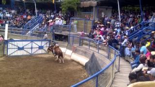 Jaripeo Medialuna Santa Cruz, VI Region, Chile 04 (HD)