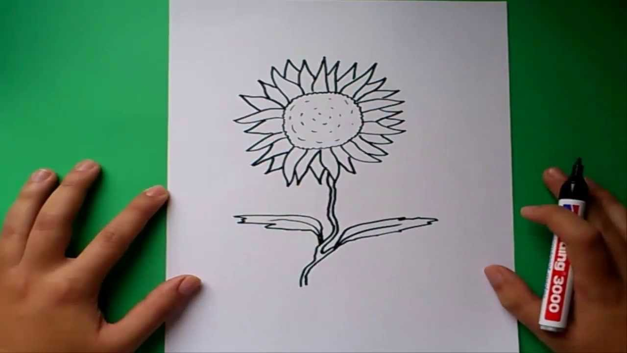 Como dibujar un girasol paso a paso  How to draw a sunflower