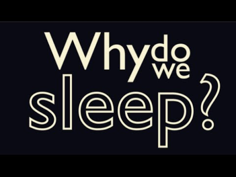 why we need sleep A 10 to 20-minute nap is all you need to refresh your mind if you're feeling groggy or tired the national sleep research project 40 facts about sleep you probably didn't know  dosomething on we heart it dosomething1 on youtube about what is dosomethingorg our team.