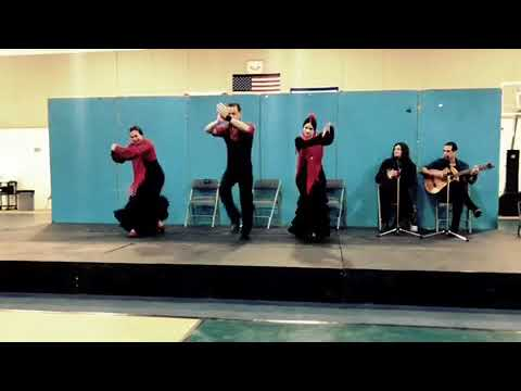 Flamenco Dance Fun at Alexander Montessori School